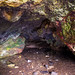 Cave in Ballintoy Harbour