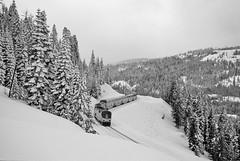 Amtrak at Soda Springs (Ray C. Lewis) Tags: trains transportation railroads unionpacific rosevillesub california northern amtrak donnerpass mountains snow winter passenger travel