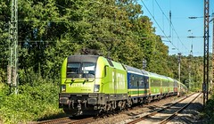 08_2018_08_06_Gelsenkirchen_Rotthausen_ES_64_-_005_6182_505_DISPO_FLIXTRAIN_mit_FLX_1803_➡️_Köln (ruhrpott.sprinter) Tags: ruhrpott sprinter deutschland germany allmangne nrw ruhrgebiet gelsenkirchen lokomotive locomotives eisenbahn railroad rail zug train reisezug passenger güter cargo freight fret gelsenkirchenrotthausen rotthausen essen köln mönchengladbach 0422 1428 6146 6182 es 64 f4 u2 es64f4 es64u2 mrcedispolokdispo mrce dispo flx 1803 flixtrain flixbus hkx heros s2 rb42 re2 bahntouristikexpress schienenwalzzeichen rolling marks outdoor logo natur