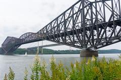 Ponts de Québec, P.Q., Canada - 7412 (rivai56) Tags: saintnicolas québec canada ca pontsdequébec pq pont bridge fleuve saintlaurent bridges