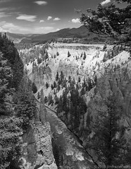 Lava Creek (Jim Frazier) Tags: 2018 201807montana 201807yellowstone bw bank blackandwhite blueskies bluesky canyon desaturated evergreens geology jimfraziercom july landscape lavacreek monochrome mountains mountainsides nationalpark natural nature nps pines q3 rapids riparian river riverbank riverfront riverrunsthroughit riverside rock rockymountains scenery scenic summer sunny trees vacation water wyoming yellowstone f10 fastpictures instagram
