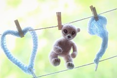 Laundry tuesday ! (*c*j*) Tags: felted tiny bear ourson 7dwf ctt handmade hechoamano