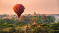 Up in the Air | Bagan (dawvon) Tags: forest bagan historicalbuilding plants balloon asia southeastasia nature hotairballoon trees architecture myanmar mandalayregion morningmist temple stupa burma mandalay republicoftheunionofmyanmar ပြည်ထောင်စုသမ္မတမြန် newbagan myanmarburma ပြည်ထောင်စုသမ္မတမြန်မာနိုင်ငံတော်