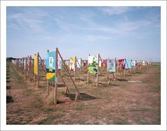 A coloured field. The Colorfield Performance (macfred64) Tags: filmanalog mediumformat 120 645 6x45 sloten the netherlands art painting event fujiga645wi fujinon45mmf4 kodak ektar100 thecolorfielperformance