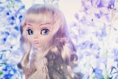 New girl ~ (Dekki) Tags: chantal pullip bianca limited edition asian fashion doll groove jun planning junplanning beautiful toy japan