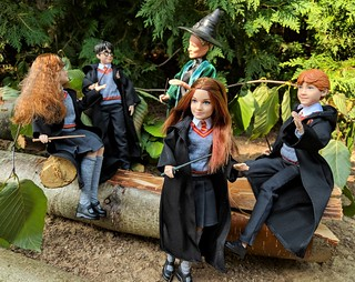 Field trip to the Forbidden Forest, also known as the Dark Forest, borders the edges of the Hogwarts School of Witchcraft and Wizardry grounds.