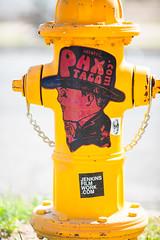 Where Have You Been?  Who Have You Loved Before? (Thomas Hawk) Tags: arizona phoenix usa unitedstates unitedstatesofamerica firehydrant graffiti streetart fav10