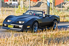 Chevrolet Corvette Stingray Convertible 1975 (8501) (Le Photiste) Tags: clay chevroletdivisionofgeneralmotorsllcdetroitusa chevroletcorvettestingrayconvertible cc 1975 chevroletcorvettec3series1yzmodel1z67stingrayconvertible350v8 americanconvertible americanluxurycar oddvehicle oddtransport rarevehicle groningenthenetherlands thenetherlands 00vl06 sidecode3 simplyblack afeastformyeyes aphotographersview autofocus artisticimpressions alltypesoftransport anticando blinkagain beautifulcapture bestpeople'schoice bloodsweatandgear creativeimpuls cazadoresdeimágenes carscarscars canonflickraward digifotopro damncoolphotographers digitalcreations django'smaster gearheads friendsforever finegold fandevoitures fairplay greatphotographers groupecharlie peacetookovermyheart hairygitselite ineffable infinitexposure iqimagequality interesting inmyeyes livingwithmultiplesclerosisms lovelyflickr myfriendspictures mastersofcreativephotography niceasitgets photographers prophoto photographicworld planetearthtransport planetearthbackintheday photomix soe simplysuperb saariysqualitypictures slowride showcaseimages simplythebest thebestshot thepitstopshop themachines transportofallkinds theredgroup thelooklevel1red vividstriking wheelsanythingthatrolls yourbestoftoday oldtimer