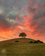 Those clouds 😍😍 (James Mc Innes) Tags: 1018mm 2018 burrowhill canon canon7dmkii clouds jamesmcinnes june landscapes skyscape somerset summer sunset