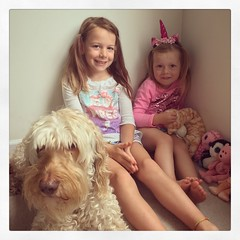 Mornings With The Munchkins (matthewkaz) Tags: madeleine norah daughter daughters child children dino dog labradoodle home house burcham eastlansing michigan unicorn 2018