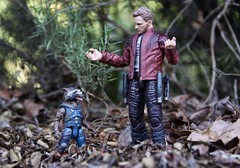 """""""Sorry, I took it too far. I mean't 'Trash Panda'"""" (westhl) Tags: marvel legends guardians galaxy starlord rocket raccoon trash panda volume 2 two vol studios cinematic universe milano toy toys photo photography"""