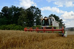 DSC_9726 (anetaležáková) Tags: summer sunset summerharvest sunnydays harvest agriculture agriphoto czechagri caseihpuma case casepuma165 caseoptum casepuma200 claas claaslexion newholland