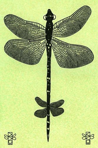 Primeval Deities: Dragoonius Flyus