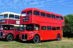 RM848 448UXS (PD3.) Tags: london transport aec routemaster rm848 rm 848 448uxs 448 uxs bus buses hampshire hants england uk gosport lee solent stokes bay station fareham provincial society preserved vintage coach seafront sea front 2018
