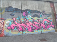 343 (en-ri) Tags: hans rosa arrow nero 2018 parco dora torino wall muro graffiti writing