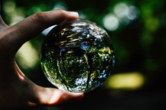 LENSBALL (Kamilla Kazimova) Tags: lens lensball bokeh 50mm nikon nikond5600 d5600 cry crystal cr crystalball glas glass glassball sphere nature trees
