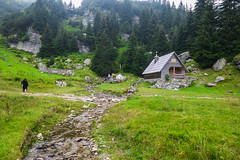 Vranica mountain, Bosnia and Herzegovina (HimzoIsić) Tags: landscape nature house creek stream grassland grass hill forest mountain mountainside water conifer countryside rural green