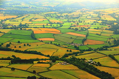 Picture Perfect (acwills2014) Tags: countryside fields hedges hedgerows farms homesteads wales welshcountryside talgarth patchwork