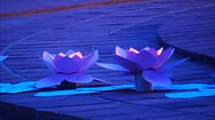 decorations_237 (Manohar_Auroville) Tags: auroville sri aurobindo gathering amphitheatre matrimandir bonfire dawnfire birthday manohar luigi fedele