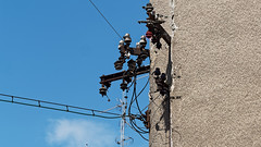 The best electricians ever (ntemptm) Tags: best electricians czech architecture built structure cable carefulness sky connection day electricity manatwork nopeople outdoors perfect photographer power line supply technology