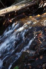 bthrocks&waterethBloVASkylineEloDarkHollowTrail.jpg (rachelgreenbelt) Tags: usa virginia northamerica midatlanticregion scapes shenandoahnationalpark 710natural americas waterscape midatlantic