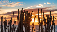 Summer Vibe! (karindebruin) Tags: brouwersdam thenetherlands nederland northsea noordzee goereeoverflakkee ouddorp zonsondergang sunset zuidholland summer