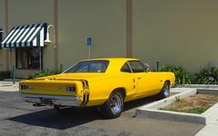 Big Bee (Riex) Tags: yellow jaune dodge coronet superbee mopar 2door coupe kareta design auto car automobile vehicle vehicule carrosserie wheels pony muscle americana collectible california californie g9x