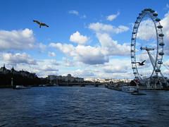 London Eye (JCMCalle) Tags: noria londres gaviota landscape ciudad town jcmcalle image photohoot fhotografy photofrapher nofilter naturephotography nofilters atenas nubes clouds cielo