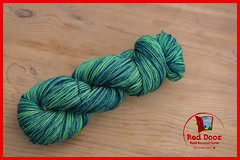 Emerald Indigo (Red Door Hand Painted Yarns) Tags: knitting sockyarn handpaintedyarn indiedyed canada skein wool merino superwash nylon crochet hats mittens shawl fadeset sweater yellow blue teal green turquoise twist hank nwt