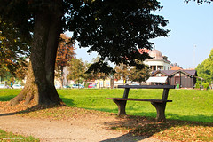Bench in the shadow from summer sun (malioli) Tags: bench tree shadow park city town place karlovac croatia hrvatska europe canon