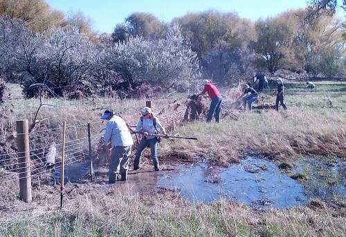 Photo - Wildlands Restoration Volunteers & Active Boulder Agricultural Project