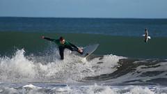 (Paul J's) Tags: newplymouth taranaki fitzroybeach newplymouthsurfridersclub surfing sport 2018super8series man