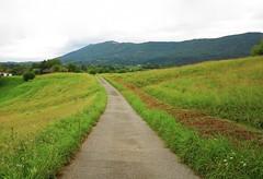 Camino de Jaizkibel (eitb.eus) Tags: eitbcom 16599 g1 tiemponaturaleza tiempon2018 monte gipuzkoa hondarribia josemariavega