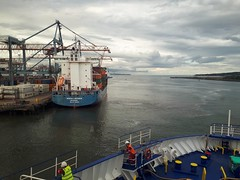 Nordic Bremen & Stena Superfast VII, seen from Stena Lagan (andrewjohnorr) Tags: nordicbremen containership stenasuperfastvii stenalagan stenaline ferries belfast