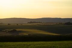 Felder (michaelmueller410) Tags: felder abend sonnenuntergang sunset dusk sundown evening fields grain grass gras powerline stromleitung grün raw harz karst hügel hills sunlight clear sky