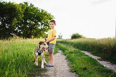 Summer evening walks (beck-chan) Tags: walk dog puppy boy child summer grass green 28mmlens sunset