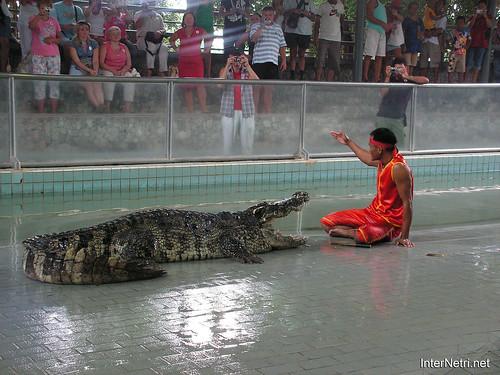 В пащу крокодилу Паттайя Таїланд Thailand InterNetri 21