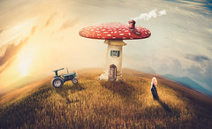 Country life (Ro Cafe) Tags: photomanipulation photoshop ps fantasy conceptual irreal naive countryside sky sunset mushrrom tractor girl colorful home surrealism beautiful storytelling