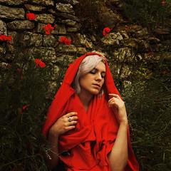 The Lamenting Madonna (Masha Sardari) Tags: selfportrait poppy flowers red madonna mary saint fine art photography masha sardari italy umbria suqare square sony a7 28mm woman