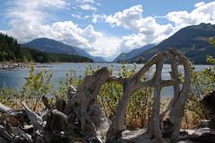 Strathcona Provincial Park (mademoisellelapiquante) Tags: pacificnorthwest vancouverisland strathcona strathconaprovincialpark strathconapark mountains canada britishcolumbia bc