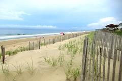 Dunes and Beach Grass, Outer Banks, North Carolina. (Karen Molenaar Terrell) Tags: outerbanks northcarolina beach atlanticocean waves sand dunes duck