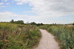 Pegwell Bay Country Park 1672 (Kent Country Parks) Tags: summer autumn spring pegwellbay country countryside kentcountryparks kent