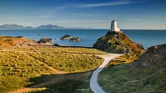 Llanddwyn Lighthouse (Mark Palombella Hart) Tags: cymru landscape hills seashore sand beach nisi
