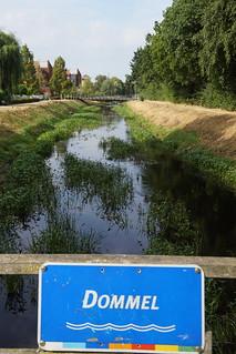 Droogte verschijnselen van de hittegolf in Sint-Oedenrode
