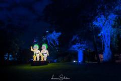 Snugglepot & Cuddlepie (leonsidik.com) Tags: leon sidik fujifilm long exposure snugglepot cuddlepie australia vivid sydney nsw newsouthwales landscape night garden blue sky