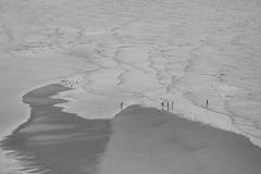 Mes bords de mer Normands (OMM.photographie) Tags: mer manche normandie nb bw noiretblanc noirblanc blackandwhite blackwhite monochrome barnevillecarteret canon5d canon 5d canon5dmarkiv canon5deosmarkiv canoneos5dmarkiv canon5deos canoneos5d nature eau plage sea beach france europe water outdoor outside extérieur paysage landscape seascape cotentin normandy