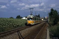 Rhein-Haardt-Bahn 1020 Ausfahrt Ellerstadt, 09.09.1995 (Tramfan2011) Tags: strasenbahn düwag rheinhaardtbahn rhb 1000mm tram germany deutschland tranvia tramway weinberge