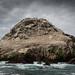 Île Rouzic