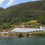 Sognefjord-36 thumbnail