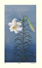 Trumpet lily (Japanese Flower and Bird Art) Tags: flower trumpet lily lilium longiflorum liliaceae yasuko onishi modern woodblock print japan japanese art readercollection